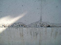 新築 基礎工事ジャンカ | 八戸の新築 工務店 グリーンホームズ