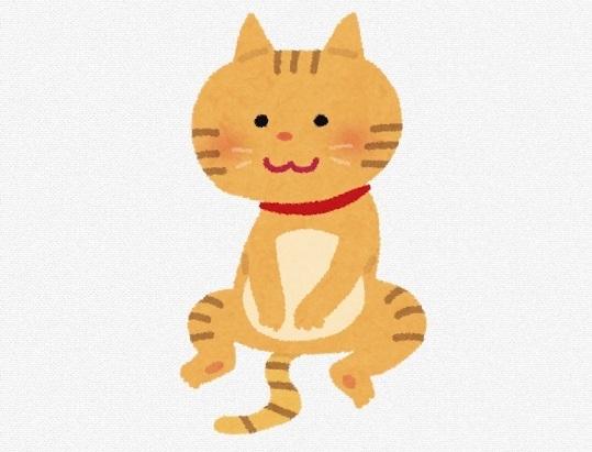 猫イラスト | 八戸の新築 グリーンホームズ