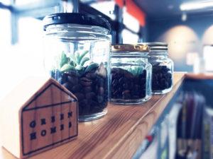 コーヒー豆テラリウム写真|八戸市 ワークショップ