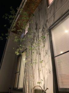 八戸市 根城のM様邸の夜の素敵な写真|八戸市 注文住宅